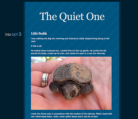 Screenshot of the personal blog